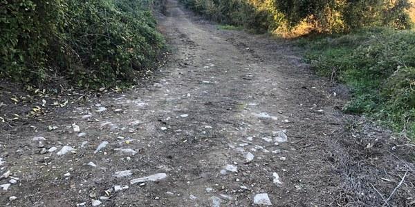 Aprovació inicial per la pavimentació de dos carrers del municipi